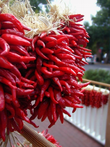 Order chile/chili online from Gary f. Maricle at nmchili.com
