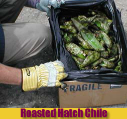 What Hatch Chile looks like right after roasting!